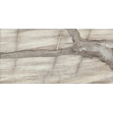 Emil Ceramica Petrified Tree 938D8P Core Grey Panther Lapp 44,4X89