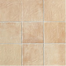 Serenissima Cotto Vogue Orange 20X20
