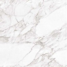 Argenta Carrara White Shine 60X60